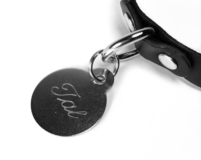 Featured listing image: Custom Engraved Collar Tag