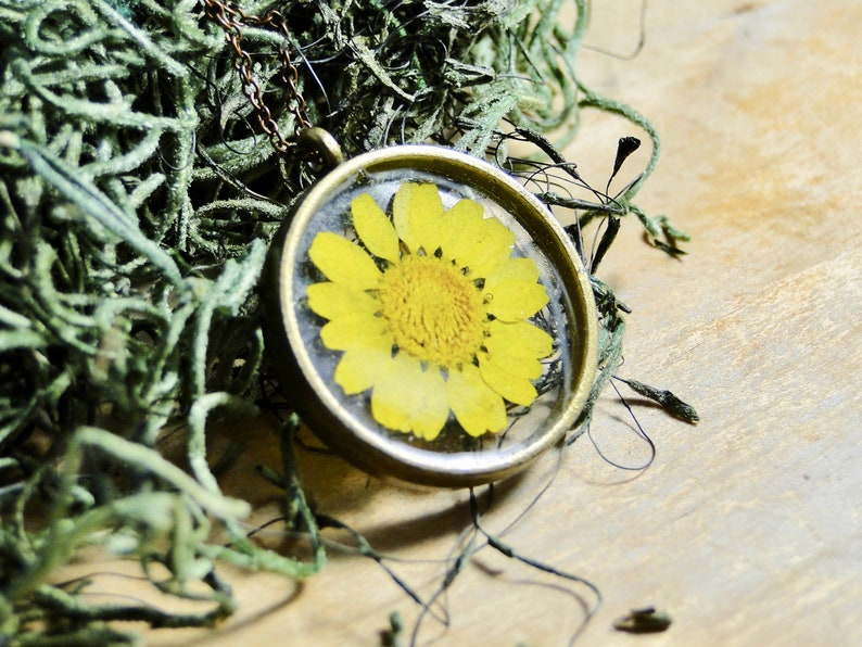 Real Daisy Necklace real daisy flower jewelry under 50 gifts image 0