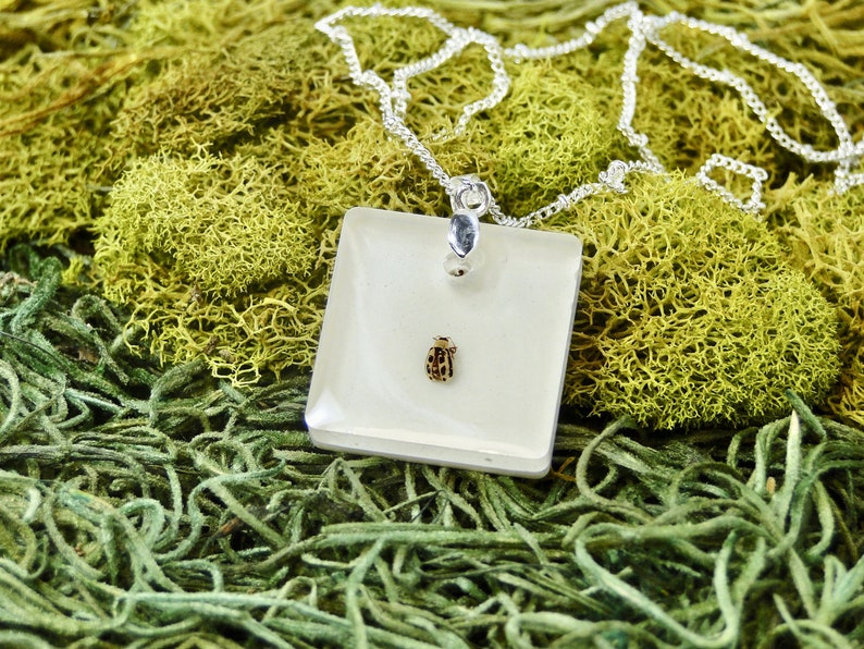 Willow Leaf Beetle Necklace Spotted Beetle necklace real image 0
