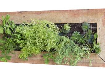 Planter Box - Wooden - Wall Mounted - Rectangular - Vertical Garden