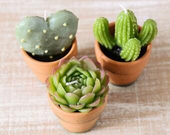 10 Mini Cactus Candles Desert Plant Shaped Tea Lights Handmade Wedding Favors