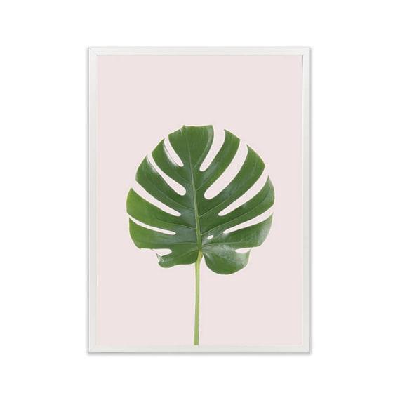 Monstera Liść Na Różowym Wydruku Rośliny Na Różowym Plakat Digital Download Tropikalne Wall Art Tropikach Druku Plakat Roślin Plakat Do Druku