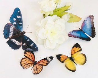 Decorative Butterflies Etsy