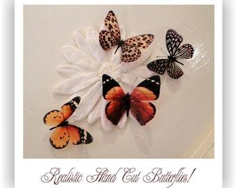 3D Decorative Butterflies x 4