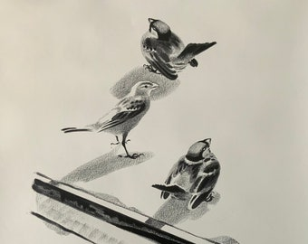 Black and white signed lithograph by Aage Sikker Hansen. Sparrows on a roof. Danish mid-century art. Wildlife series.