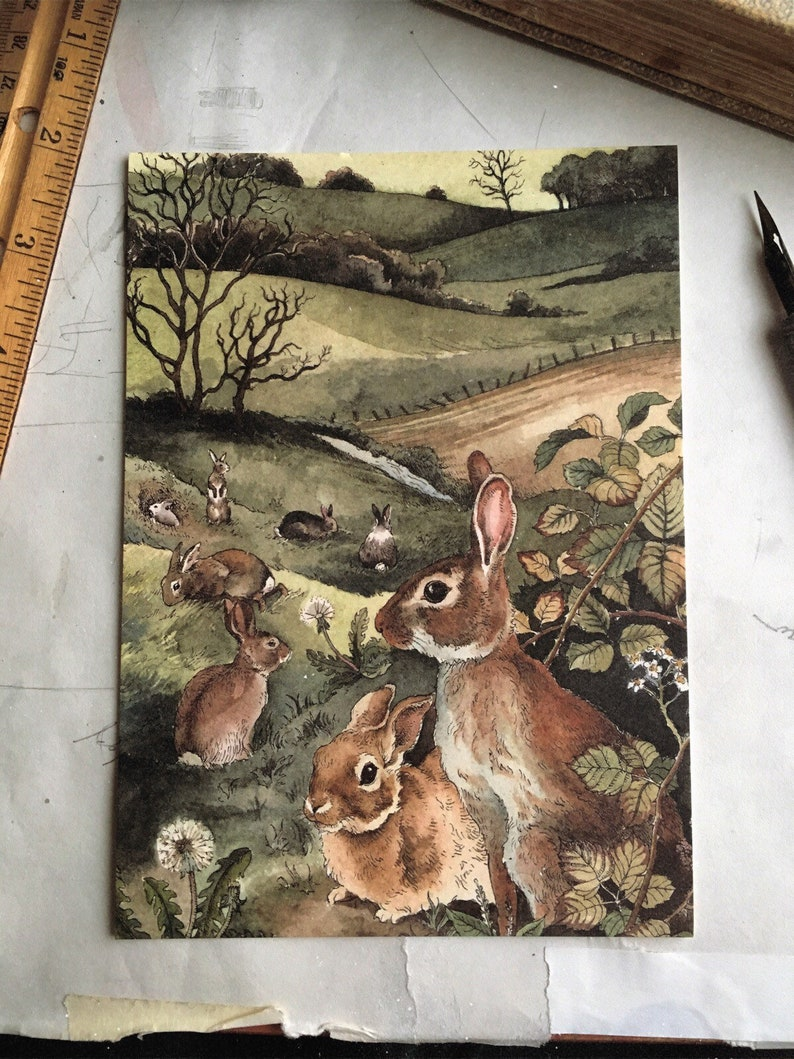 Watership Down-Inspired Print 5x7 image 0