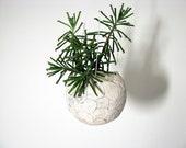 ceramic hanging planter modern flower pot rustic elegant planter minimalist design globe shape planter plant lover gift in-or outdoor plants