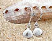 Sterling silver, seaside, shells, seashore, feminine, coastal, small, dainty, charming, handmade, cute, petite, dangle, earrings, gift,