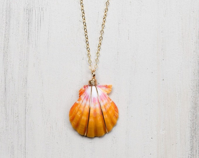 Traditional Pink and Yellow Sunrise Shell/14k Gold Filled/18""