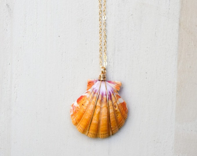Purple and Yellow Sunrise Shell/14k Gold Filled/18""