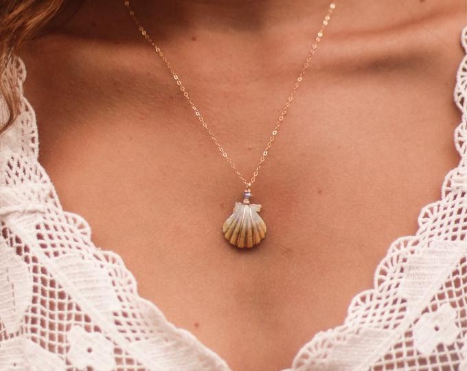 "Tiny Moonrise Shell/14k Gold Filled/18"""