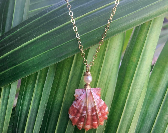 Tiny Red Sunrise Shell/14k Gold Filled/16""