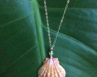 "Soft Orange Sunrise Shell Necklace/14k Gold Filled/18"""