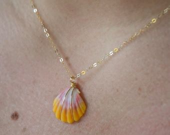 Pink and Yellow Sunrise Shell Necklace/14k Gold Filled/18""