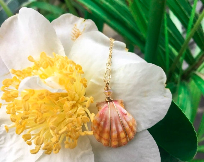 Orange and Pink Sunrise Shell/14k Gold Filled/18""