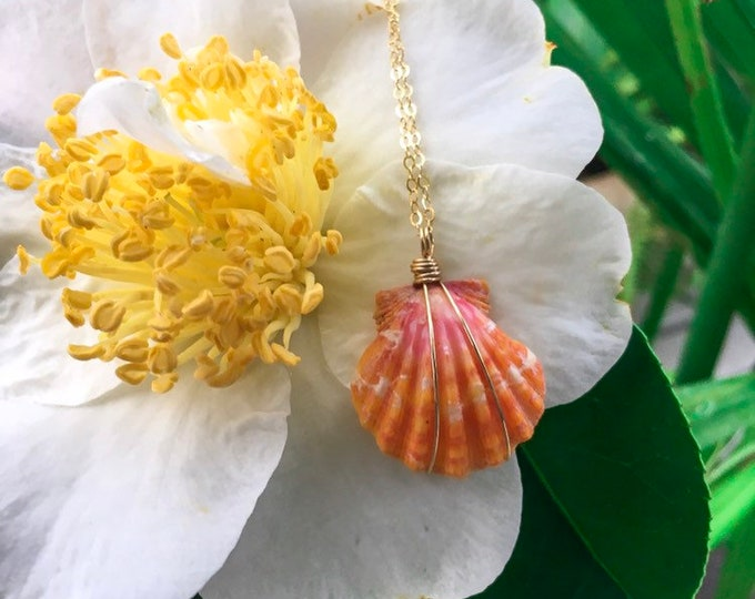 Bright Orange and Pink Sunrise Shell/14k Gold Filled/18""