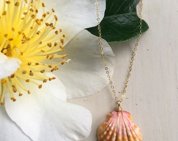 Creamy Pink and Orange Sunrise Shell Neckalce/14k Gold Filled /18""