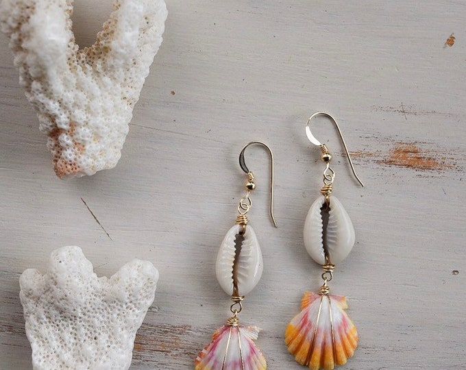 Cowire x Sunrise Shell Earrings/14k Gold Filled
