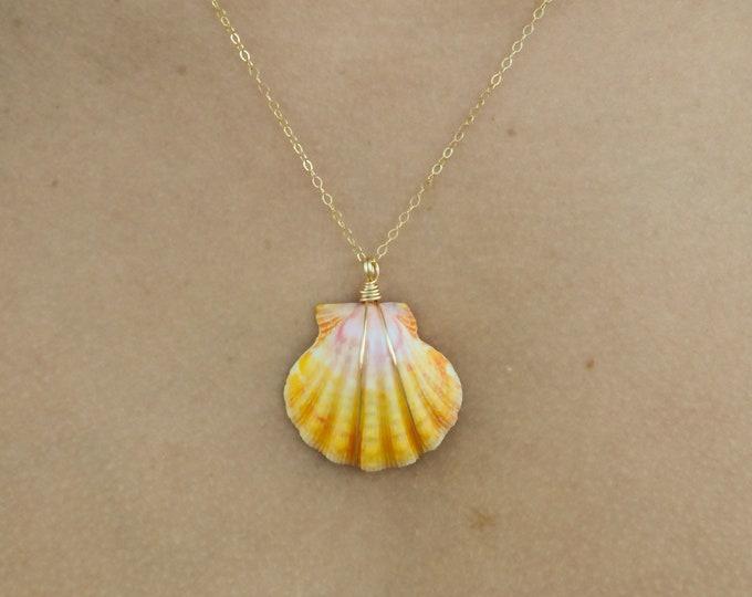 "Sunrise Shell Necklace/14k Gold Filled/18"""