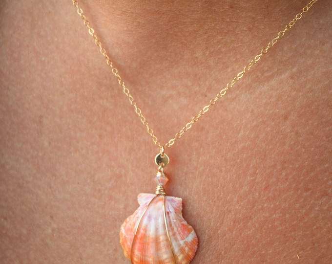 Multi Colored Sunrise Shell/14k Gold Filled