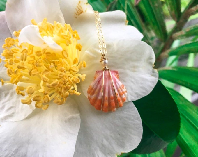 Sunrise Shell with Freshwater Pearl/14k Gold Filled/18""