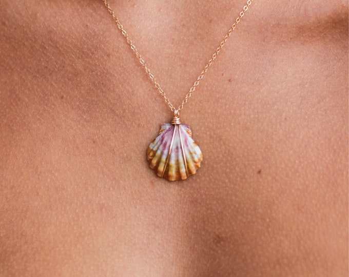 Sunrise Shell Necklace/14k Gold Filled/18""