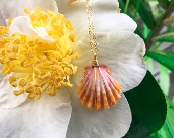 "Orange ans Light Pink Sunrise Shell/14k Gold Filled/18"""