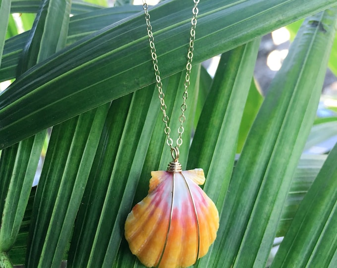 Bright Yellow and Pink Sunrise Shell/14k Gold Filled/18""
