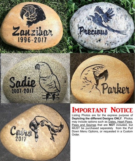 """Pet Memorial Stone 9""""/10"""" or 7""""/8"""" Personalized River Rock Stone, Indoor Outdoor, Grave Burial Marker, Parrot Tropical Exotic Birds, Amazon"""