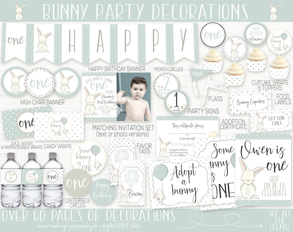 06f66595ae4 Bunny Birthday Party Decorations