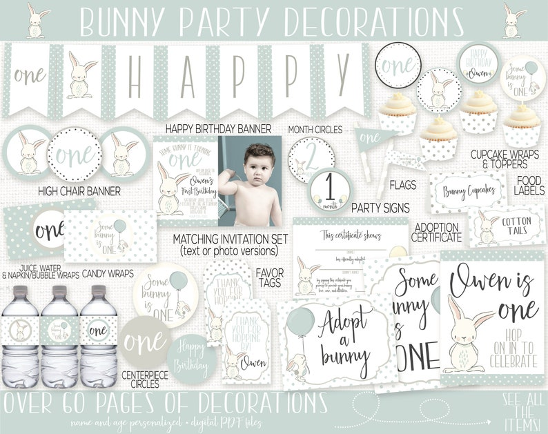Bunny Birthday Party Decorations Some Bunny is One Spring image 0