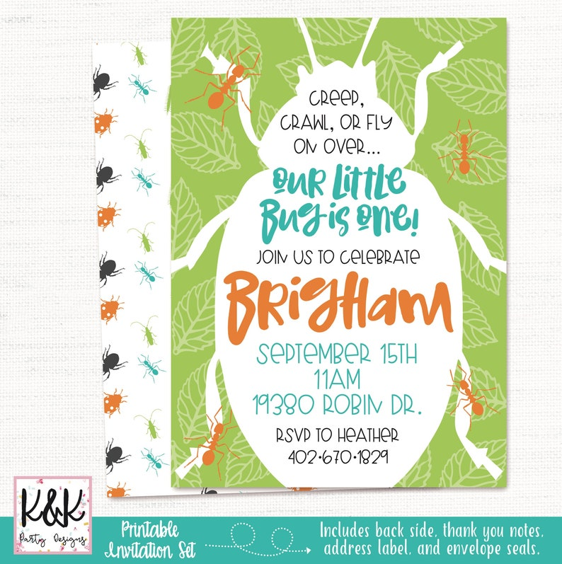 Bug Birthday Party Invitation Insect