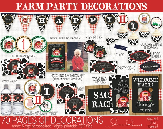 Barnyard Birthday Decorations Farm