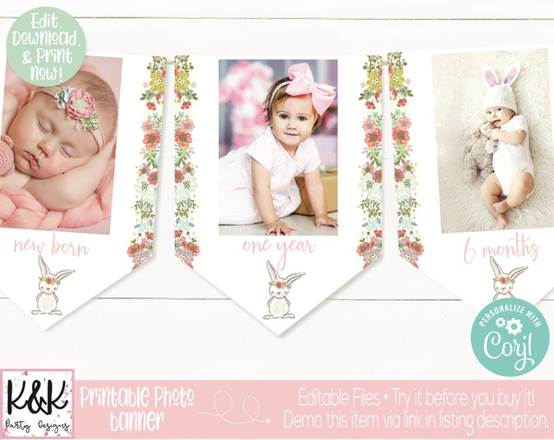 Bunny Monthly Photo Banner Bunny Birthday Party Decoration image 0