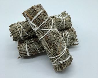 Blue Sage Smudge Bundle - Sacred Smoke - Natural Smudging Herbs