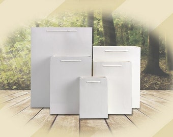 22b874a66a2 10 x White Rectangle paper bag  Paper Bags with Handle   White Shopping Bag  TZ766