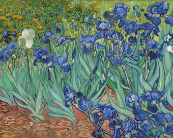 Irises by Vincent Van Gogh Home Decor Wall Decor Giclee Art Print Poster A4 A3 A2 Large Print FLAT RATE SHIPPING