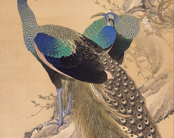 A Pair of Peacocks in Spring by Imao Keinen Home Decor Wall Decor Giclee Art Print Poster A4 A3 A2 Large Print FLAT RATE SHIPPING