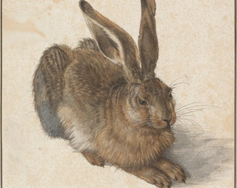 Hare by Albrecht Dürer Home Decor Wall Decor Giclee Art Print Poster A4 A3 A2 Large Print FLAT RATE SHIPPING