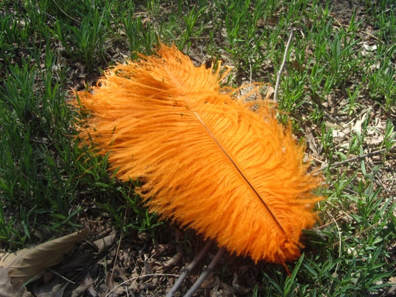 Pcs orange ostrich feather for wedding table etsy