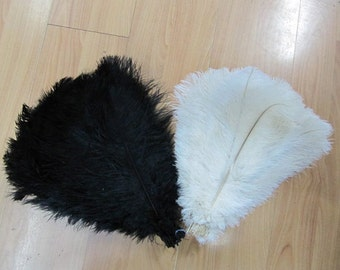 100 12-14 white feathers and 100 black feathers 10-12 ostrich feathers