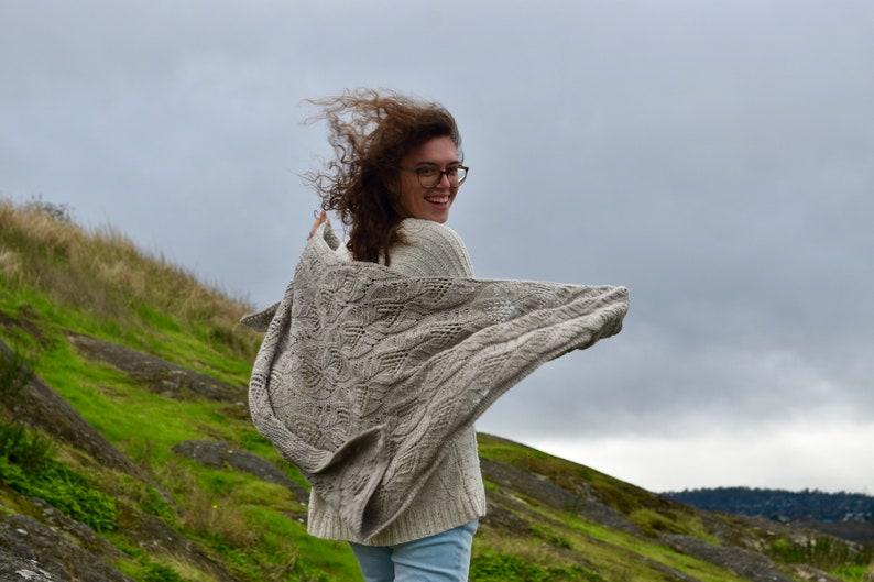 This Too Shawl Pass Kit Brown Mashup & bfl Yarn Pattern image 0