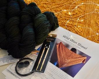 Green Lace Shawl Kit, Wild Won Pattern, Malabrigo Rios, Knitters Pride Circular Needles, Hand Dyed, Shawl Kit, Gifts, Lace Knit Shawl, Vaa