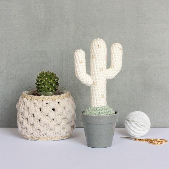 Deco Kaktus In Der Wüste Tropische Mexikanischer Kaktus Etsy