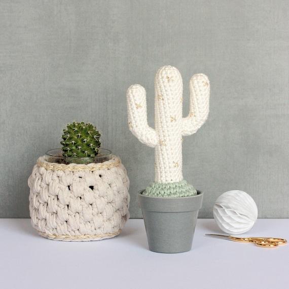 Crochet Cactus: The 25 Best Patterns - Derpy Monster | 570x570