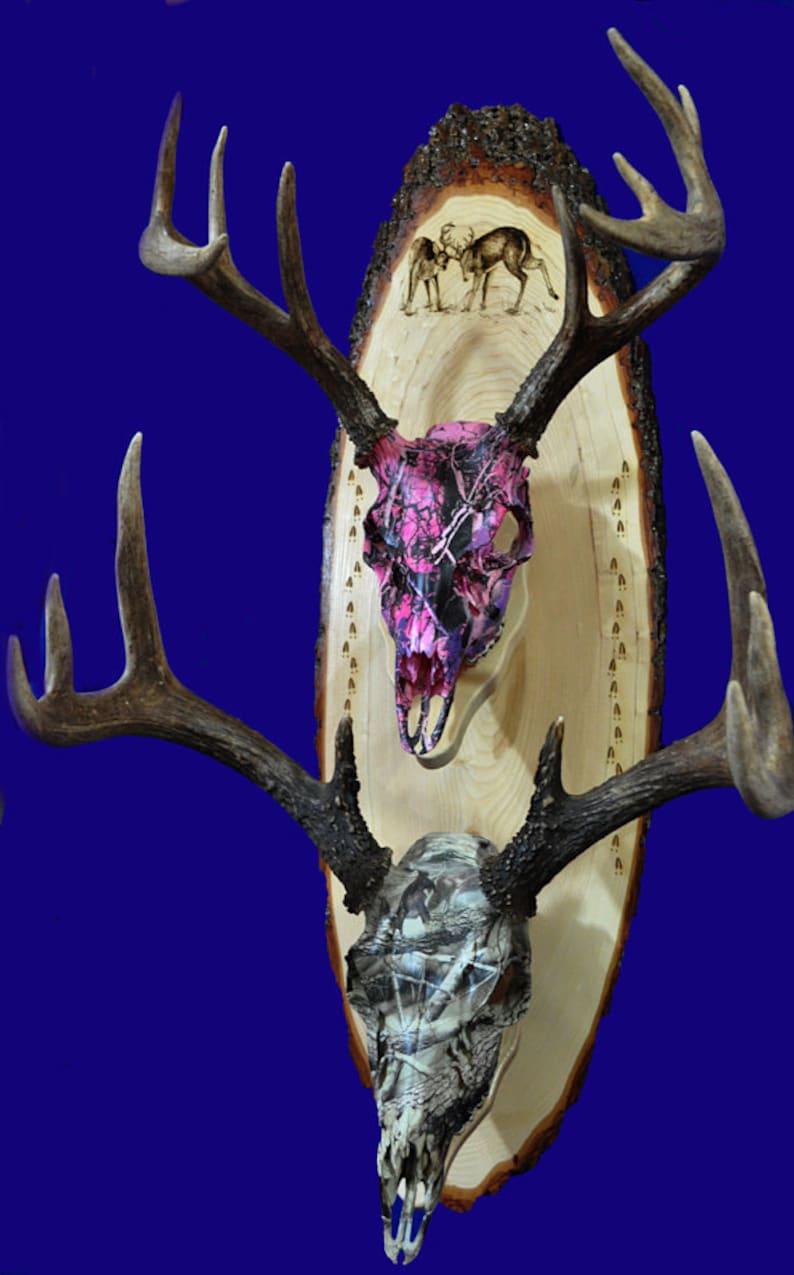 Deer Hunting   European Mount Plaque  Deer  Deer Skull image 0