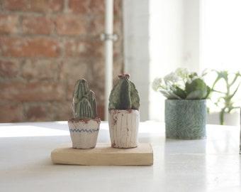 Miniature Cactus- Cactus Lovers-Botanical Art-Ceramic Miniature-Desert Art