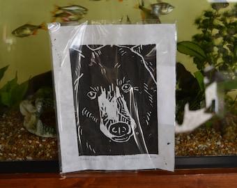 Linoleum print of North American Black Bear