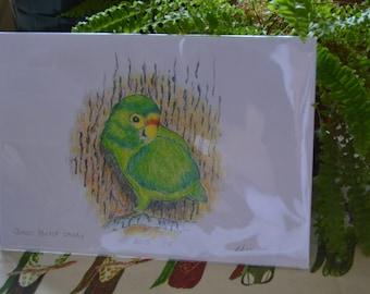 Green Parrot by Tree Fine Art Print