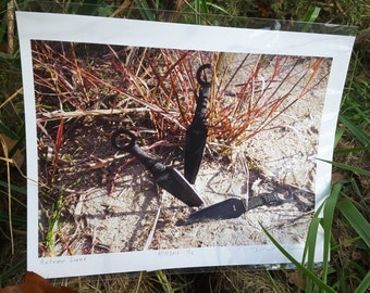 Kunai knives with autumn grasses photo print